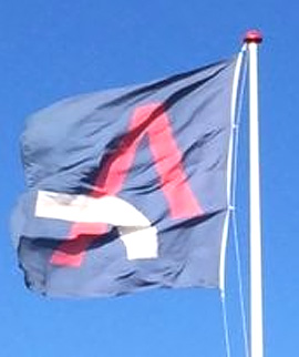 Logoflag4